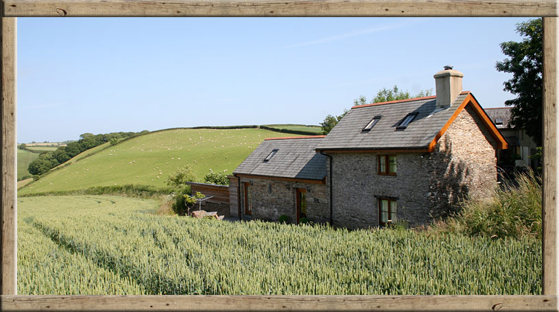 Jacks Cottage holiday accommodation in Harberton